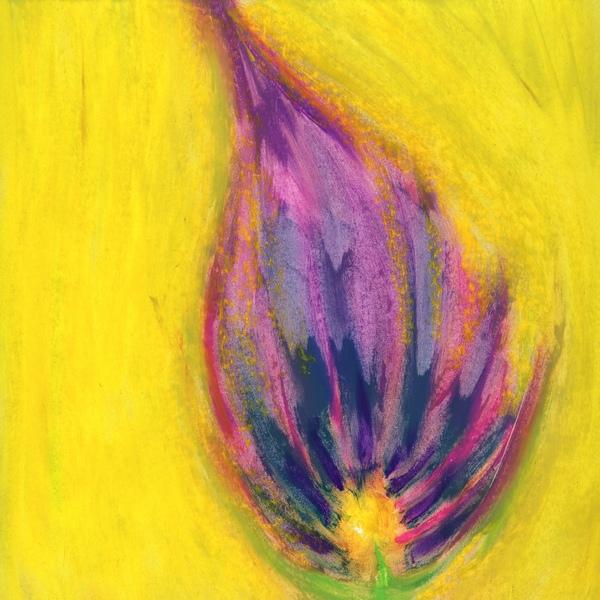 4-22 fleur violet jaunes 21-21 cadre30-30